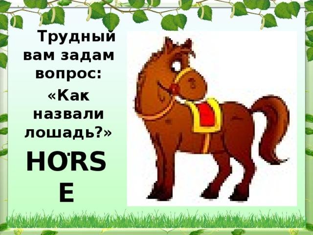 Трудный вам задам вопрос: «Как назвали лошадь?» …   HORSE