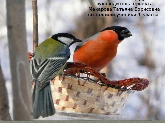 Птицы – наши друзья  руководитель проекта :  Макарова Татьяна Борисовна выполнили ученики 1 класса