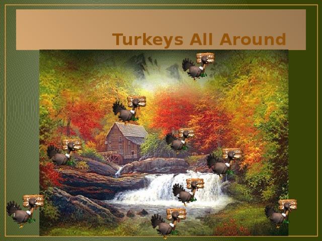 Turkeys All Around