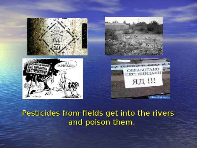 Pesticides from fields get into the rivers and poison them.
