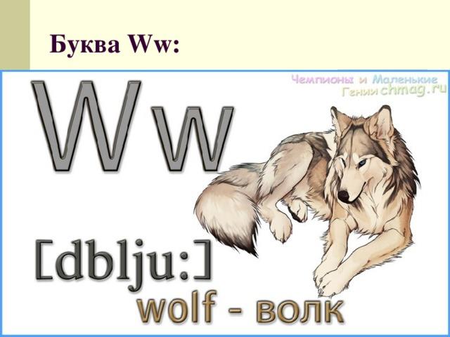 Буква Ww: