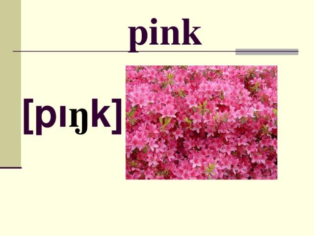 pink [ p ı ŋ k ]
