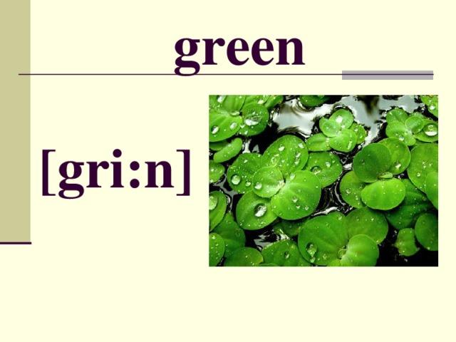 green [ gri:n ]