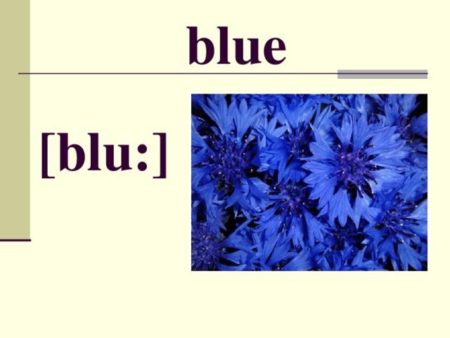 blue [ blu: ]