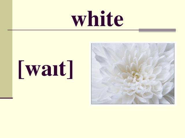 white [ wa ı t ]