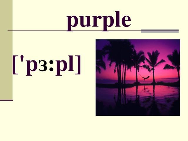 purple [' p з : pl ]