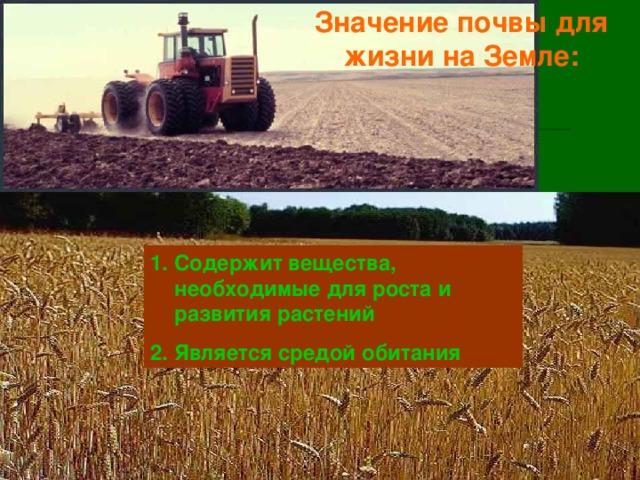 Значение почвы для жизни на Земле: