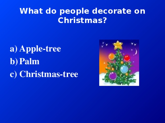 What do people decorate on Christmas?
