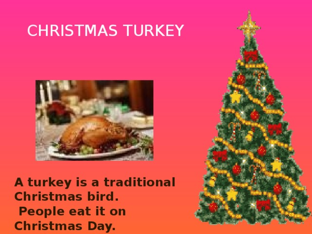 CHRISTMAS TURKEY A turkey is a traditional Christmas bird.  People eat it on Christmas Day.