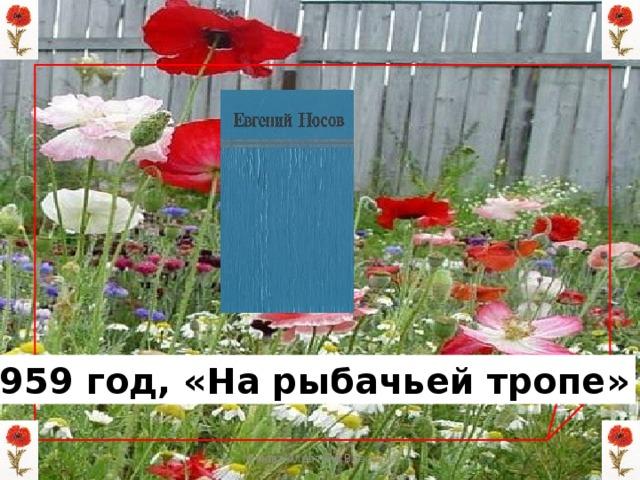 1959 год, «На рыбачьей тропе» Мизёва Алевтина Власовна