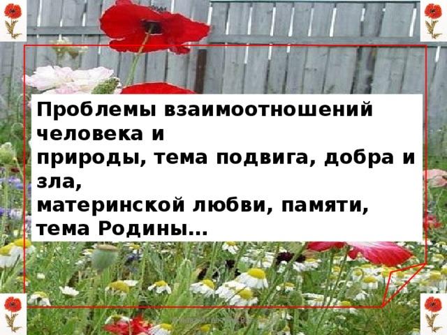 Проблемы взаимоотношений человека и природы, тема подвига, добра и зла, материнской любви, памяти, тема Родины… Мизёва Алевтина Власовна