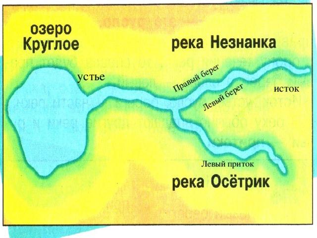Левый берег Правый берег устье исток Левый приток