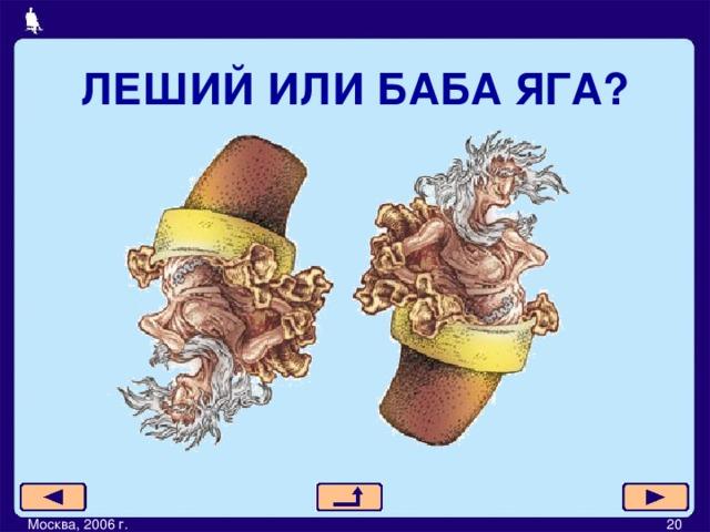 ЛЕШИЙ ИЛИ БАБА ЯГА? Москва, 2006 г.         20