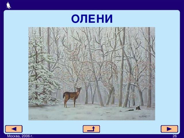ОЛЕНИ Москва, 2006 г.         26