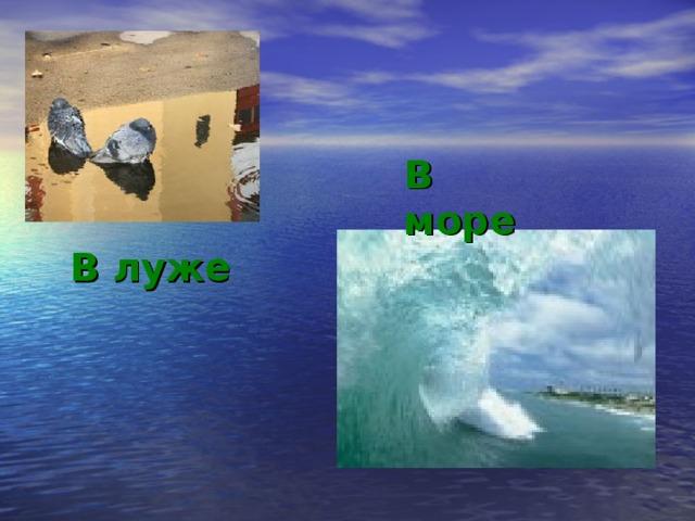В море В луже