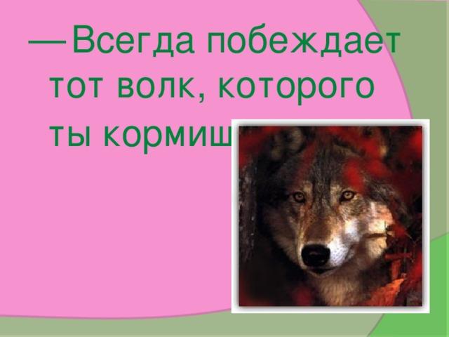 —  Всегда побеждает тот волк, которого ты кормишь .