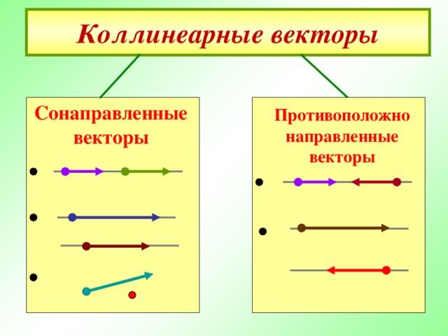 Коллинеарные векторы Сонаправленные векторы  Противоположно направленные векторы