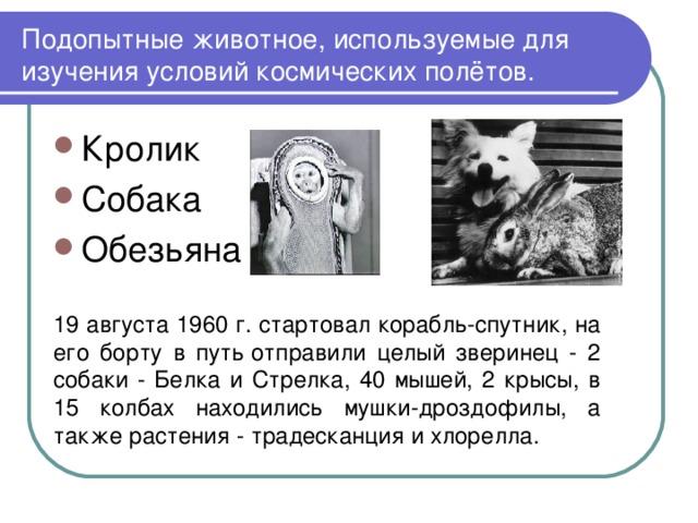 Подопытные животное, используемые для изучения условий космических полётов. Кролик Собака Обезьяна  19 августа 1960 г. стартовал корабль-спутник, на его борту в путьотправили целый зверинец - 2 собаки - Белка и Стрелка, 40 мышей, 2 крысы, в 15 колбах находились мушки-дроздофилы, а также растения - традесканция и хлорелла.