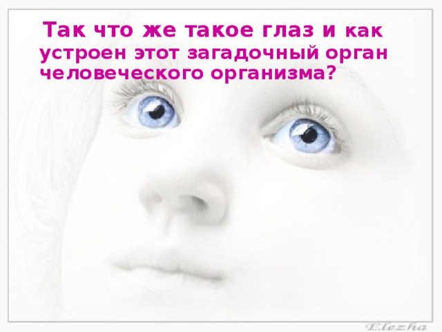 Так что же такое глаз и как устроен этот загадочный орган человеческого организма?