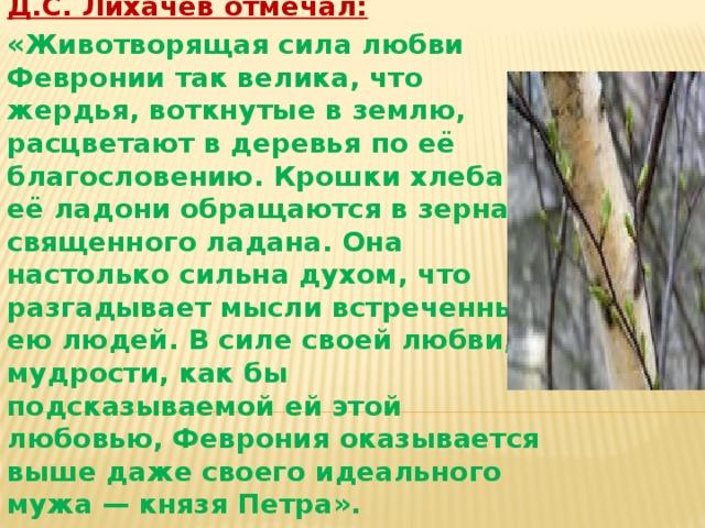 .    Феврония- идеал женщины? Нравится ли вам Феврония? Да или нет, почему? Д.С. Лихачев отмечал: «Животворящая сила любви Февронии так велика, что жердья, воткнутые в землю, расцветают в деревья по её благословению. Крошки хлеба в её ладони обращаются в зерна священного ладана. Она настолько сильна духом, что разгадывает мысли встреченных ею людей. В силе своей любви, в мудрости, как бы подсказываемой ей этой любовью, Феврония оказывается выше даже своего идеального мужа — князя Петра».
