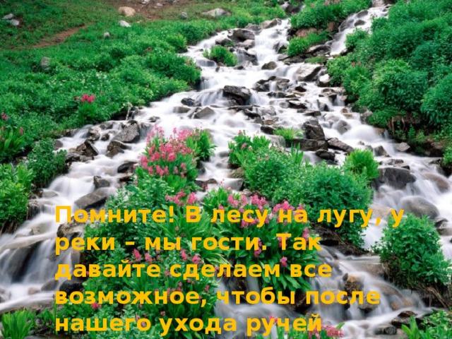 Помните! В лесу на лугу, у реки – мы гости. Так давайте сделаем все возможное, чтобы после нашего ухода ручей остался прозрачным, лес – здоровым и зеленым, трава пушистой, а наша совесть - чистой!