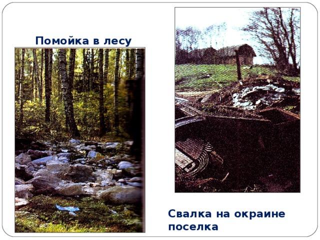 Помойка в лесу Свалка на окраине поселка