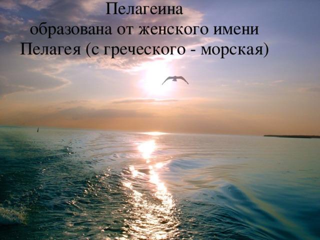 Пелагеина  образована от женского имени Пелагея (с греческого - морская)