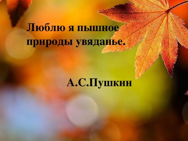 Люблю я пышное природы увяданье.  А.С.Пушкин