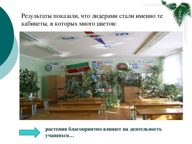 Результаты показали, что лидерами стали именно те кабинеты, в которых много цветов:  растения благоприятно влияют на деятельность учащихся…