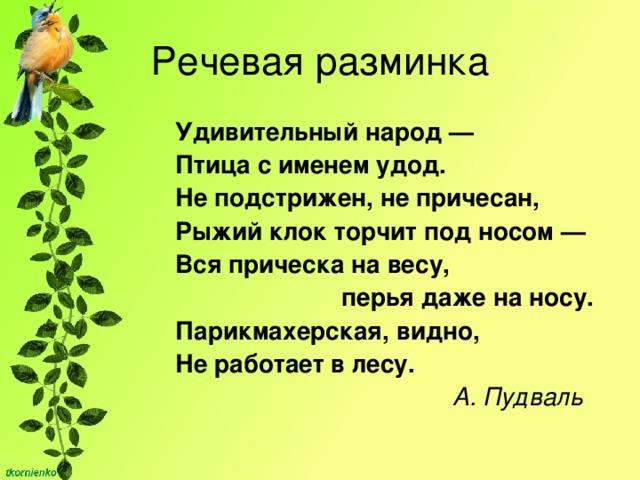 Речевая разминка Удивительный народ — Птица с именем удод. Не подстрижен, не причесан, Рыжий клок торчит под носом — Вся прическа на весу,  перья даже на носу. Парикмахерская, видно, Не работает в лесу.  А. Пудваль
