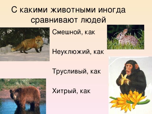 С какими животными иногда сравнивают людей  Смешной, как  Неуклюжий, как  Трусливый, как  Хитрый, как