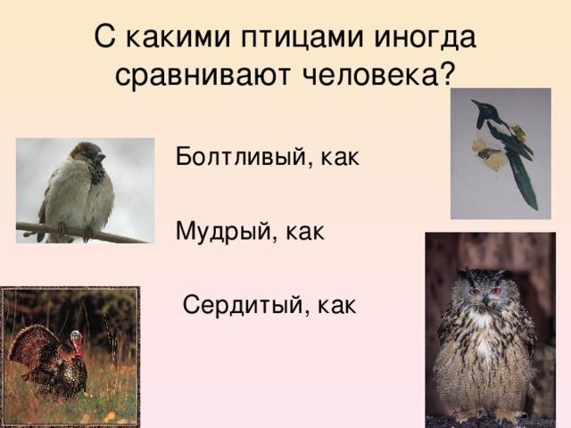 С какими птицами иногда сравнивают человека?  Болтливый, как  Мудрый, как  Сердитый, как