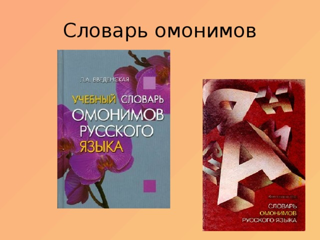 Словарь омонимов