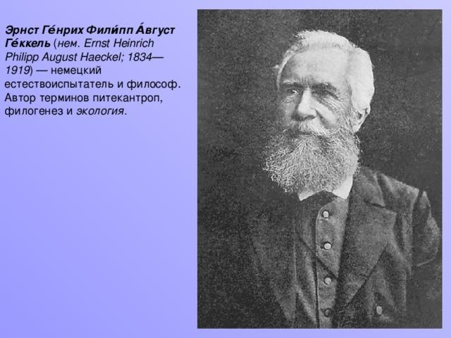 Эрнст Ге́нрих Фили́пп А́вгуст Ге́ккель ( нем. Ernst Heinrich Philipp August Haeckel; 1834—1919 ) — немецкий естествоиспытатель и философ. Автор терминов питекантроп, филогенез и экология.