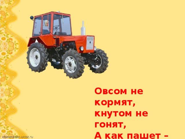Овсом не кормят, кнутом не гонят, А как пашет – 5 плугов тащит.