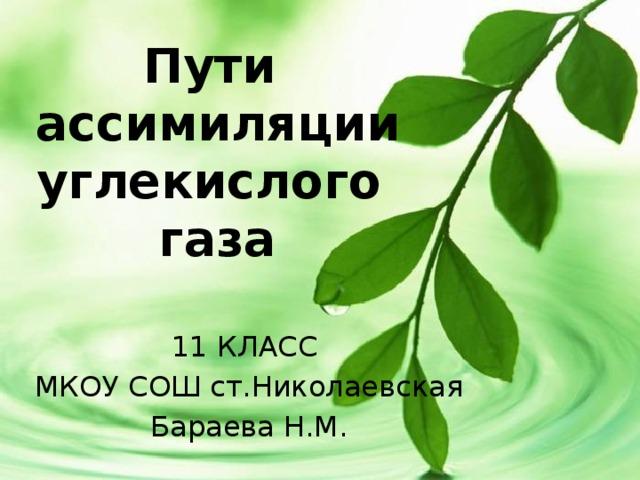 Пути  ассимиляции углекислого  газа 11 КЛАСС МКОУ СОШ ст.Николаевская Бараева Н.М.