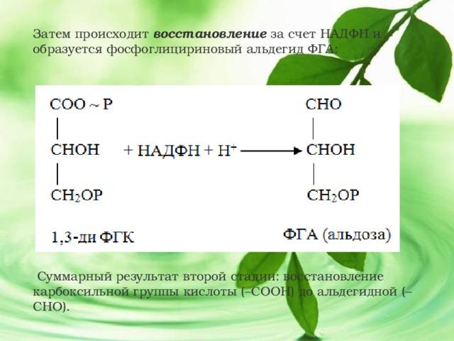 Затем происходит восстановление за счет НАДФН и образуется фосфоглицириновый альдегид ФГА:  Суммарный результат второй стадии: восстановление карбоксильной группы кислоты (–СООН) до альдегидной (–СНО).