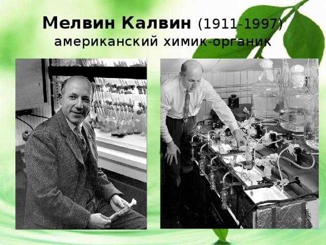 Мелвин Калвин (1911-1997)  американский химик-органик