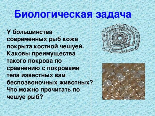 Биологическая задача У большинства современных рыб кожа покрыта костной чешуей. Каковы преимущества такого покрова по сравнению с покровами тела известных вам беспозвоночных животных? Что можно прочитать по чешуе рыб?