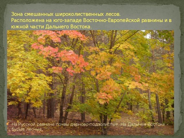 Зона смешанных широколиственных лесов.  Расположена на юго-западе Восточно-Европейской равнины и в южной части Дальнего Востока.