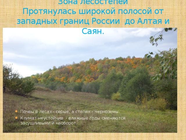 Зона лесостепей  Протянулась широкой полосой от западных границ России до Алтая и Саян.