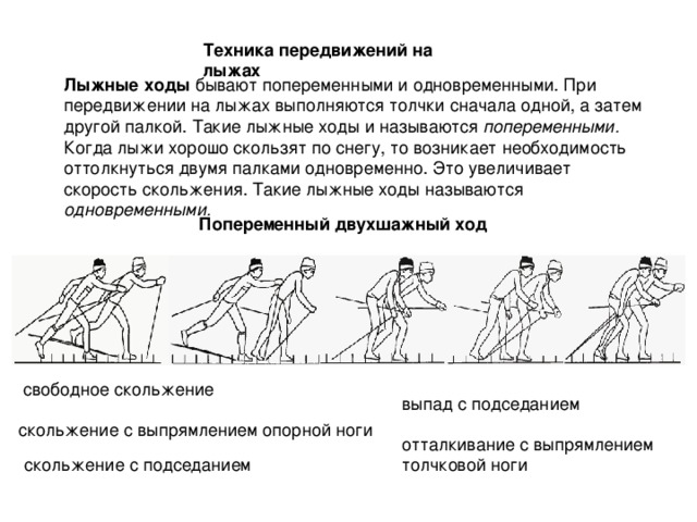 Техника передвижений на лыжах Лыжные ходы попеременными. одновременными. Попеременный двухшажный ход выпад с подседанием скольжение с подседанием