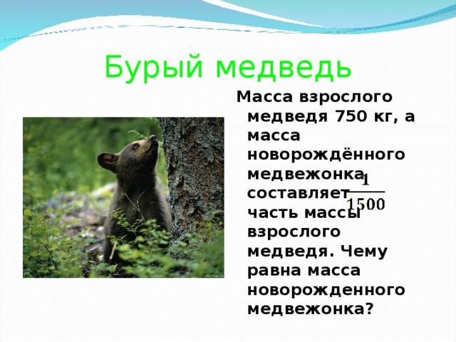 Бурый медведь Масса взрослого медведя 750 кг, а масса новорождённого медвежонка составляет часть массы взрослого медведя. Чему равна масса новорожденного медвежонка?