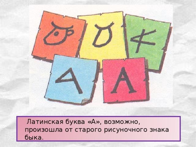 Латинская буква «А», возможно, произошла от старого рисуночного знака быка.