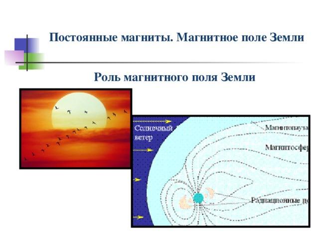 Постоянные магниты. Магнитное поле Земли Роль магнитного поля Земли