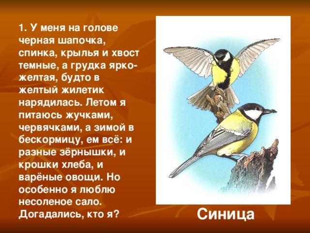 1. У меня на голове черная шапочка, спинка, крылья и хвост темные, а грудка ярко-желтая, будто в желтый жилетик нарядилась. Летом я питаюсь жучками, червячками, а зимой в бескормицу, ем всё: и разные зёрнышки, и крошки хлеба, и варёные овощи. Но особенно я люблю несоленое сало. Догадались, кто я? Синица