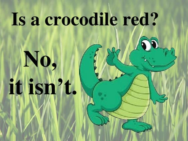 Is a crocodile red ? No, it isn't.