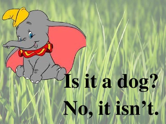 Is it a dog ? No, it isn't.