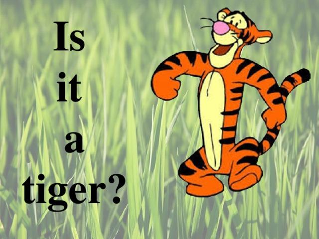 Is  it  a tiger ?