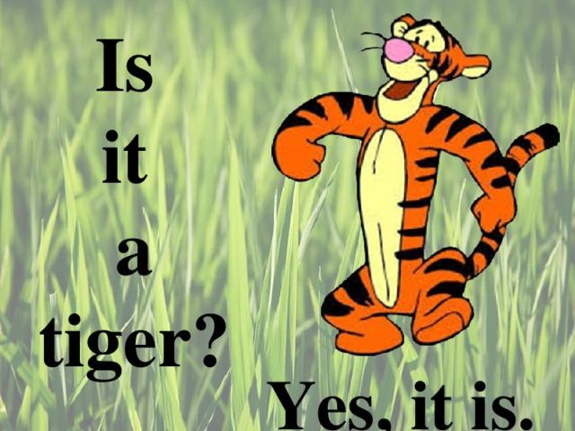 Is  it  a tiger ?  Yes, it is.